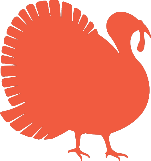 turkey icon image